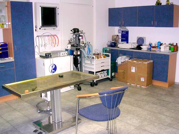 Behandlungsraum Kleintierpraxis Arend